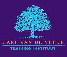 Team coaching - Carl Van de Velde Training Instituut