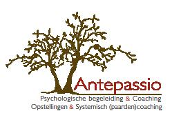 Team coaching - Antepassio