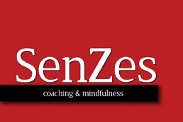 Life coaching - SenZes